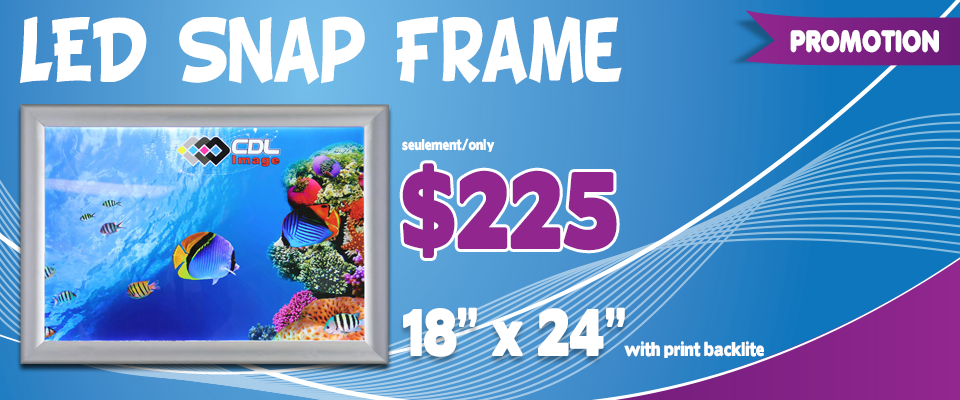 Promotion-Banners_snapframe
